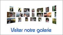 Visiter la galerie photos et vidéos de tropic video photo